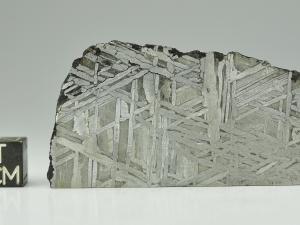 aletai-99g