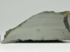 chinga-1124g