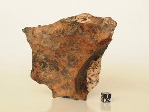 Canyon-Diablo-iron-IAB-1.4kg-complete-speicmen