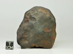 Gao-Guenie-H5-256g-complete-specimen