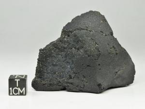 Jbilet-Winselwan-CM2-124g-complete-specimen