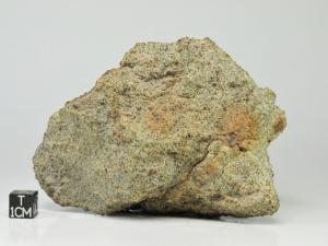 NWA-5929-L4-501g-fragment