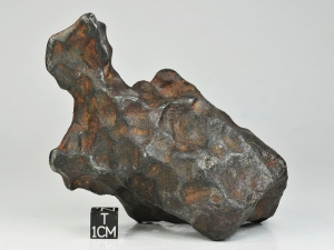 NWA-859-Taza-plessitic-octahedrite-847g-complete-specimen