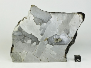 Sikhote-Alin-iron-IIB-3.9kg-half-specimen