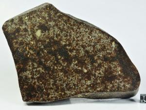 nwa-8184-l3-7-2-5kg-half-specimen