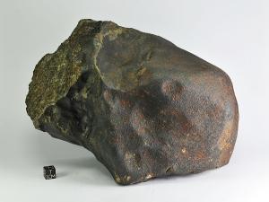dar-el-kahal-6kg-e