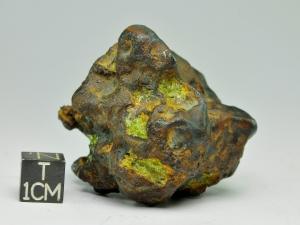 imilac-168g-3