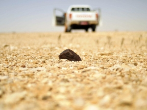in-situ-photos-of-desert-meteorites-16