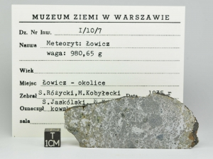 lowicz-mes-31-5g-museum-label-1