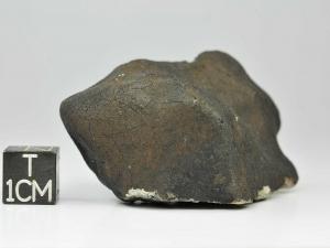 mreira-63-1