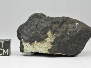 mreira-63-2