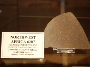 The-collection-of-the-meteorites-at-the-Mineralogical-Museum-of-University-of-Wroclaw-photo-A.-Stryjewski-12
