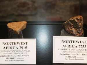 The-collection-of-the-meteorites-at-the-Mineralogical-Museum-of-University-of-Wroclaw-photo-A.-Stryjewski-7