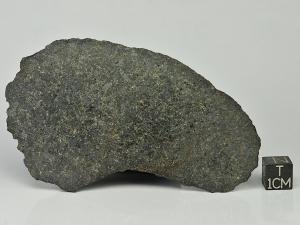 nwa-13266-c