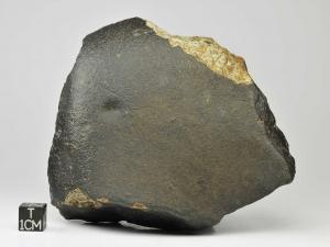 nwa-593-1