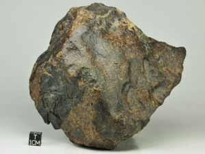 nwa-8524-ll4-6-1-6kg-ll-breccia-with-two-kinds-of-clasts-note-large-dark-clast-at-left-side