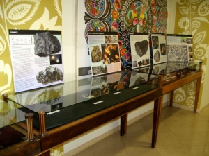 meteorite-exhibition-in-lowicz-doring-conference-2012