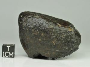 NWA xxx ureilite 120g, sand blasted fusion crust surface