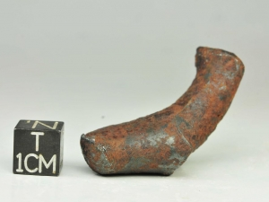 NWA-859-Taza-iron-ungr.-35g-oriented-specimen-with-bullet-shape