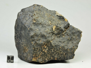 NWA-unclass.-1.2kg-piece-showing-contraction-cracks-on-fusion-crust-surface