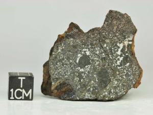 Vaca-Muerta-MES-43g-half-piece