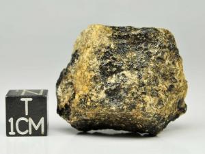 dhofar-007-euc-22g-complete-specimen