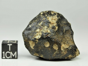dhofar-007-euc-34g-complete-specimen