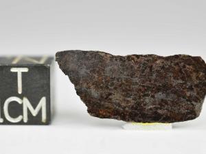 dhofar-1303-ure-1g-slice