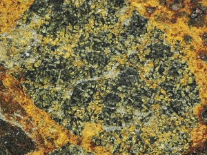 NWA 8524 LL4-6 1.6kg LL breccia close up