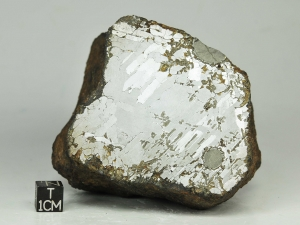 morasko-1-8kg-half-piece-a