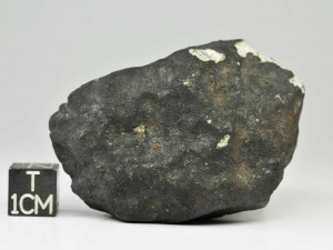 mreira-l6-70g-complete-specimen-3