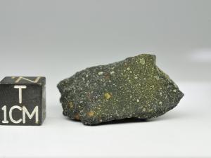 murchison-cm2-10-4