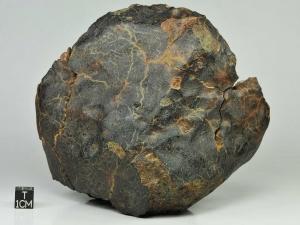 nwa-7733-ll56-1334g-complete-specimen