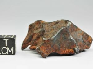 nwa-859-taza-iron-ungr-59g