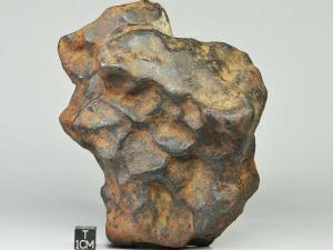 nwa-859-taza-ungr-iron-2550-complete-specimen