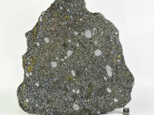 nwa-8741-mesosiderite-338g-full-slice