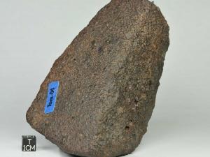 ras-431-l6-1273g-complete-specimen