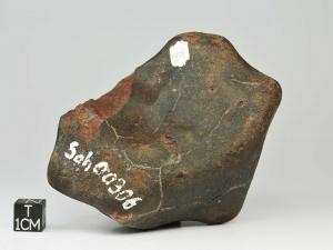 sahara-00306-uncl-443g-complete-specimen