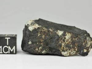 shisr-176-l6-24g-fragment-2