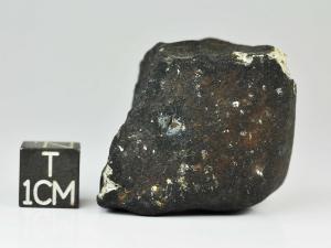 shisr-176-l6-45g-complete-specimen