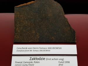 zaklodzie-enstatite-achondrite-ungr-vienna-naturhistorisches-museum-photo-dr-ludovic-ferriere-4