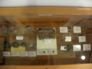 Collection-of-meteorites-at-University-of-Silesia-photo-Ewa-Budziszewska-Karwowskab