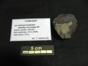 Collection-of-meteorites-at-University-of-Silesia-photo-Ewa-Budziszewska-Karwowskaf