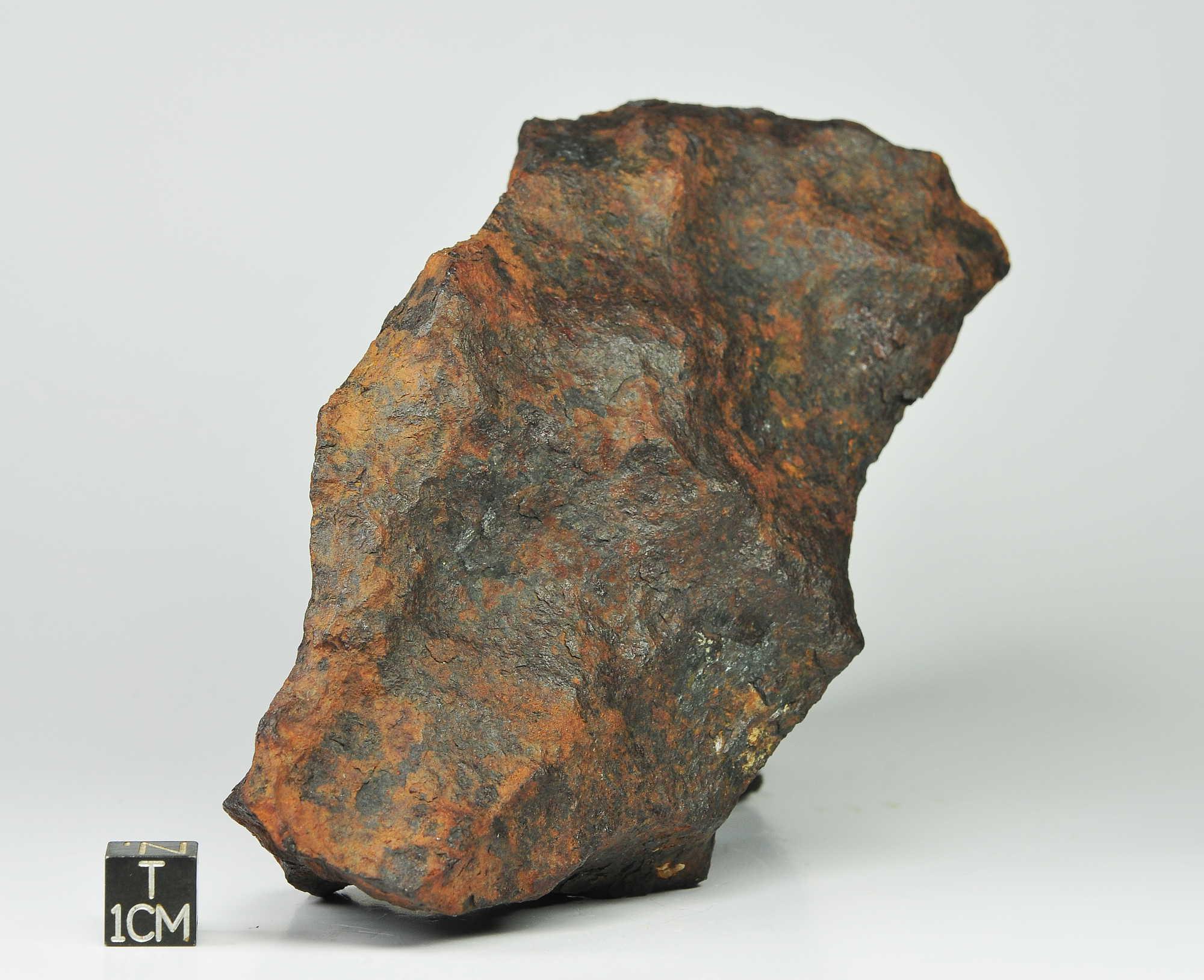 Canyon Diablo IAB 1195g (1)