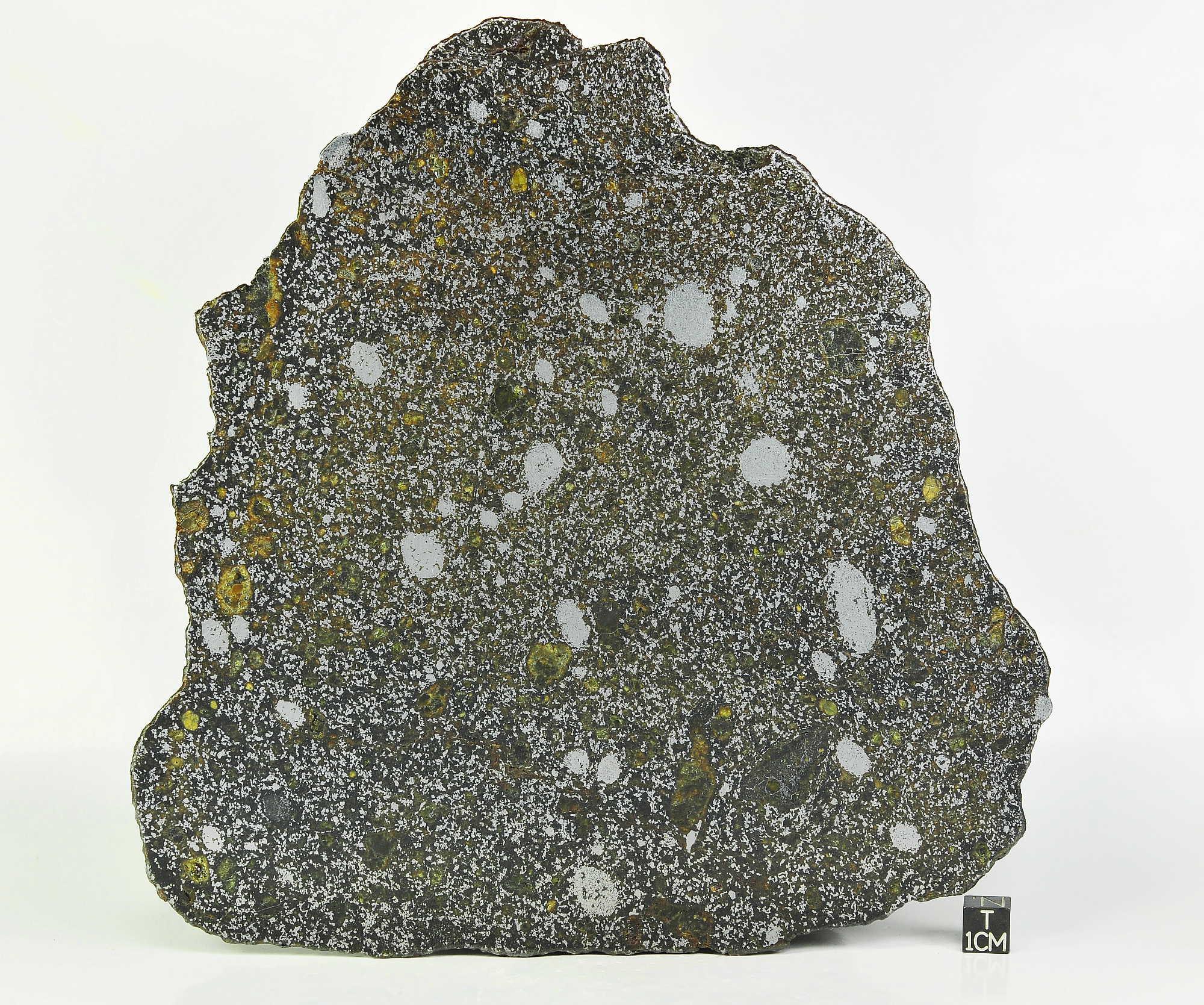 NWA 8741 Mesosiderite 338g full slice