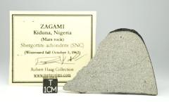 Zagami SHE 20.4g