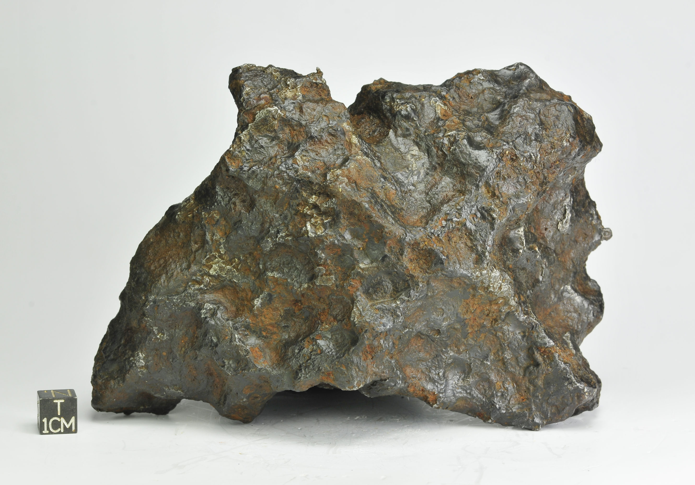 Morasko IAB 2150g