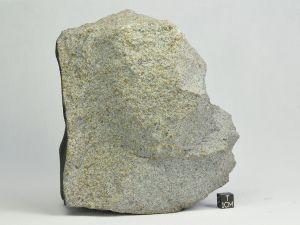 El-Hammami-H5-3280g-3