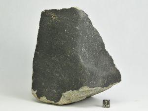 El-Hammami-H5-3280g