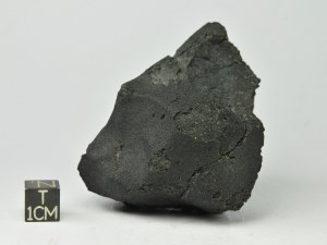 JW-CM2-123g-3